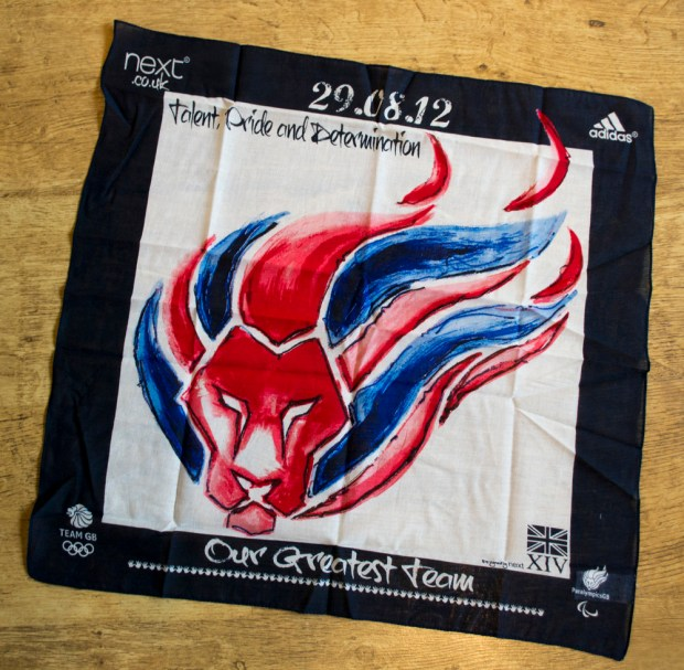 Next Paralympic Supporter's Scarf