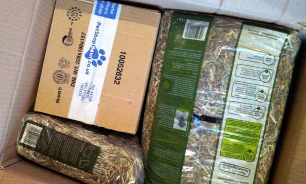 Pet Shop Bowl - Box of Goodies