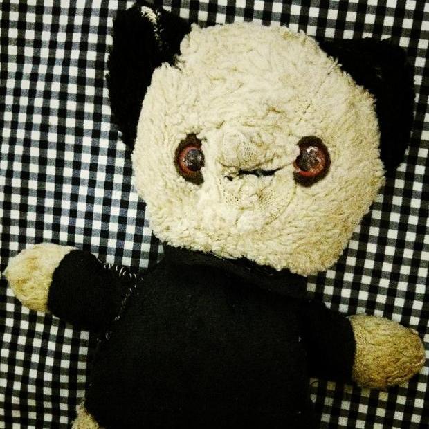 Snap Happy 23rd August - Teddy Bear