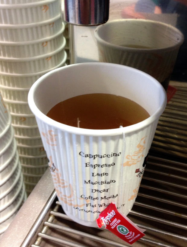Cup of Tea in a Paper Cup