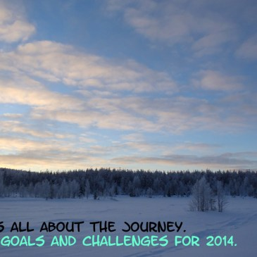 Some Goals and Challenges for 2014