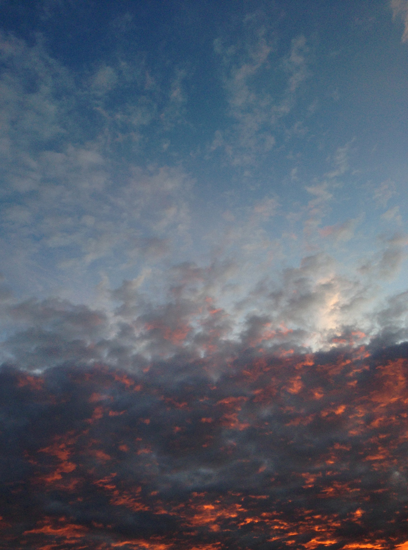 10 July - Sky over my garden.