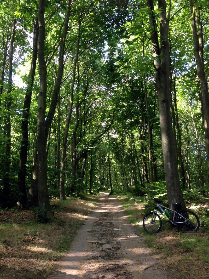 Mountain Biking at Sherwood Pines