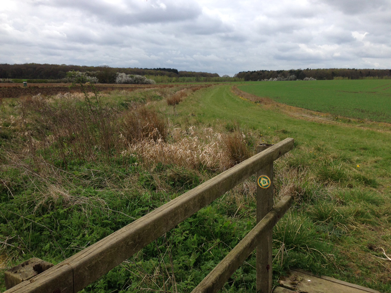 Lincolnshire - Walking in Rural Lincolnshire