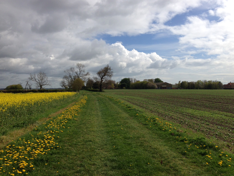 Lincolnshire - Langton by Wragby