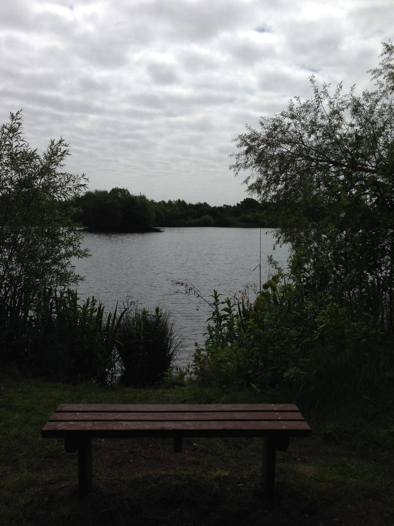 Walking in Lincolnshire - Millennium Park