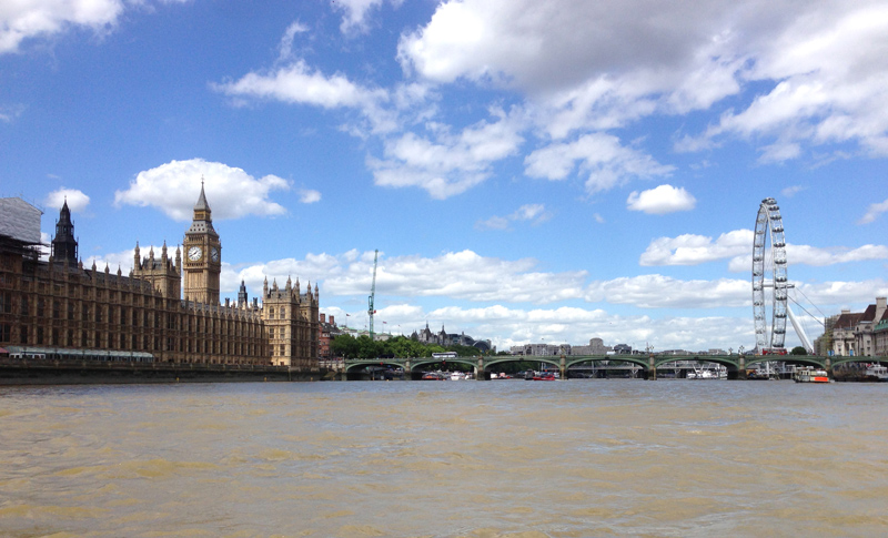 Thames RIB Experience - Westminster