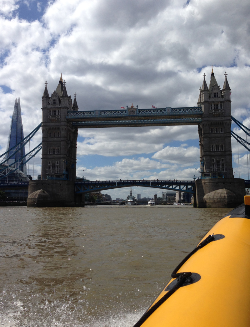 Thames RIB Experience - Tower Bridge and The Shard