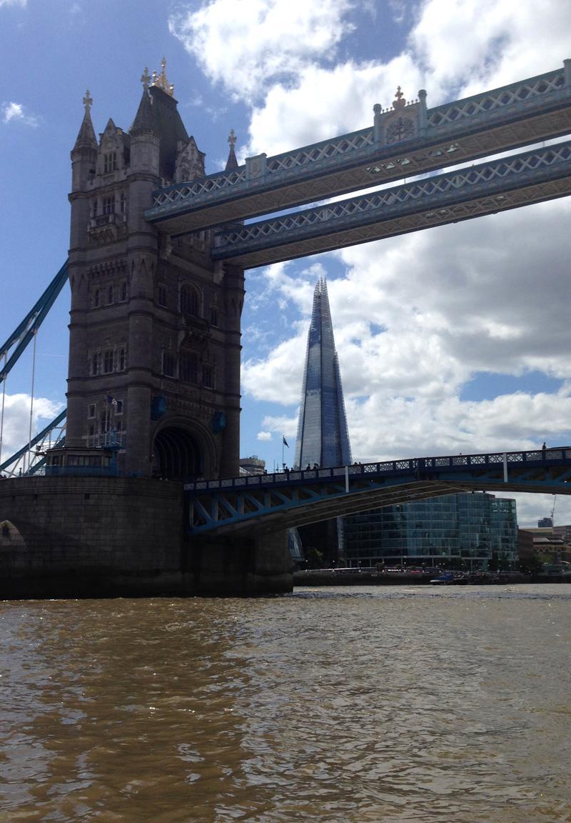 Thames RIB Experience - Tower Bridge and The Shard