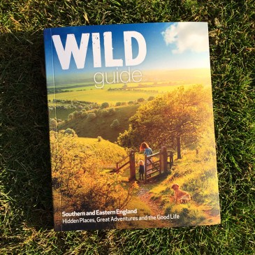 Splodz Blogz Wild Summer Photo Contest