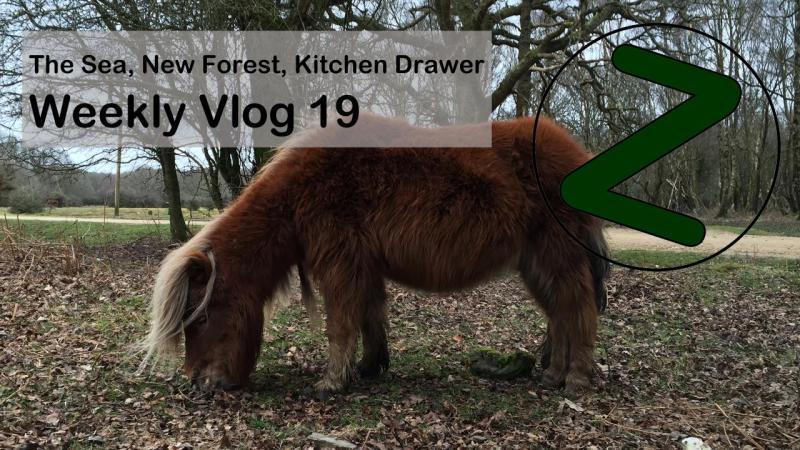 Weekly Vlog 19 Thumbnail