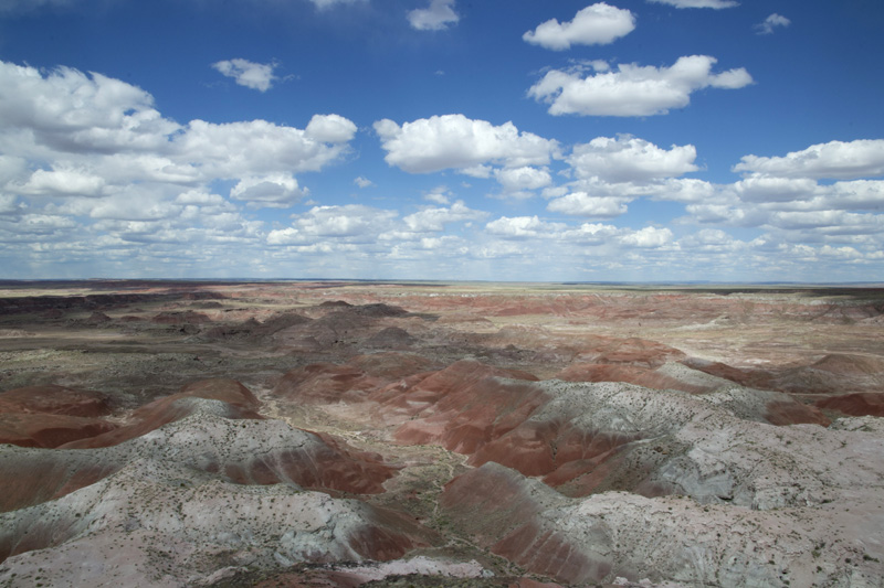 Zartusacan - The Petrified Forest, view from Kachina Point
