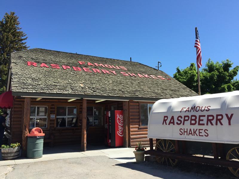 Raspberry Milkshakes!