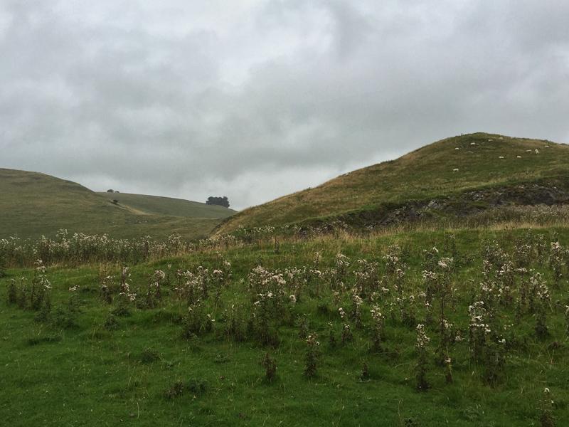 Guided Walk in Dovedale, Derbyshire - Splodz Blogz