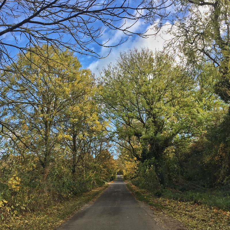 One Hour Outside - Country Lane