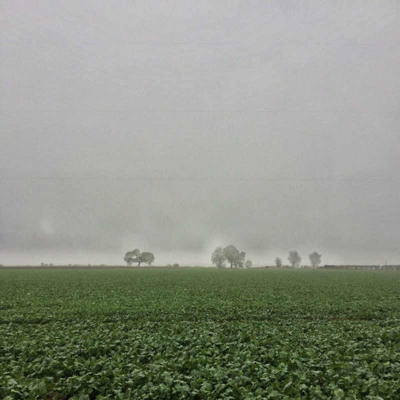 One Hour Outside - Lincolnshire in the Rain