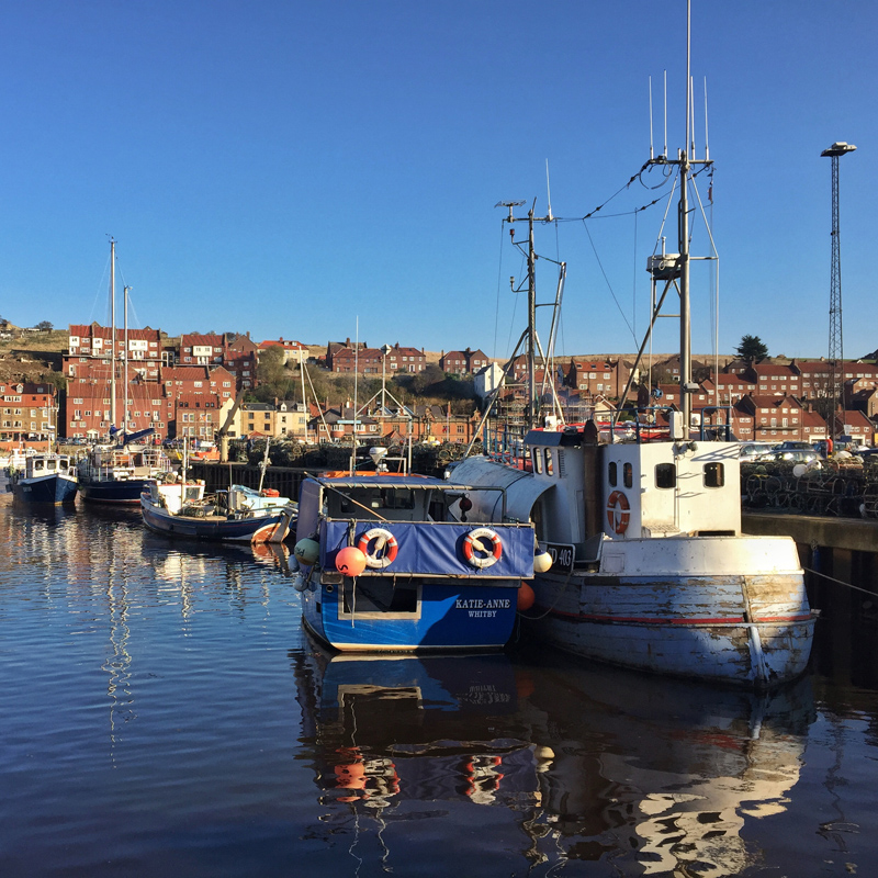 One Hour Outside - Whitby Harbour