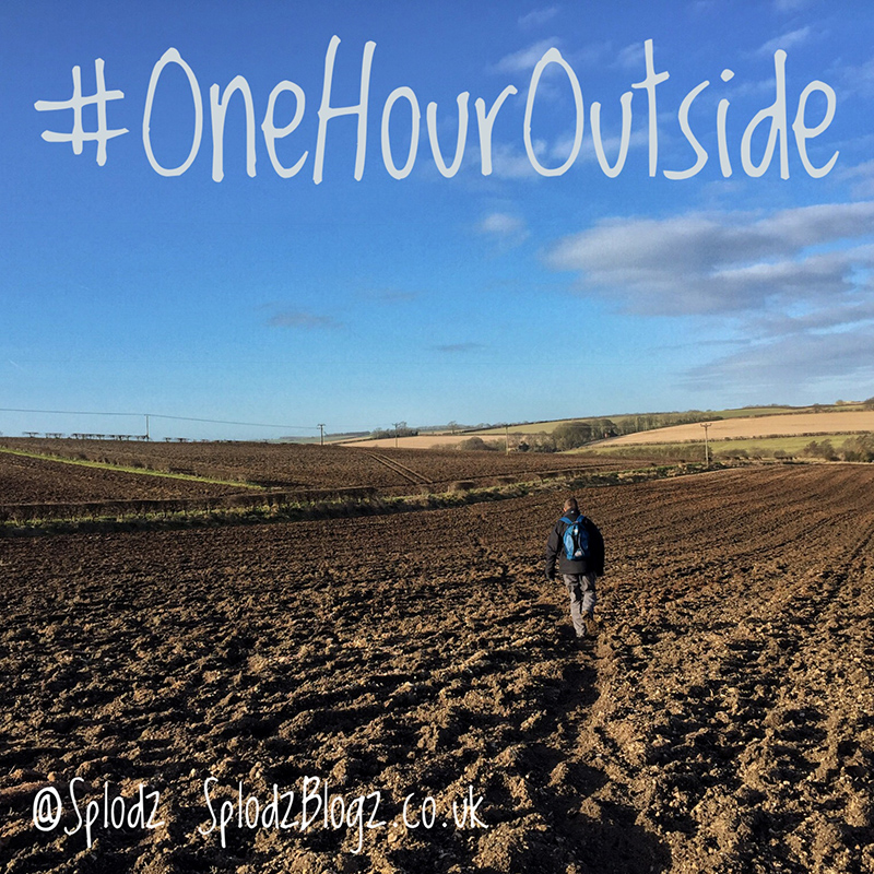 ONE HOUR OUTSIDE FEBRUARY 2017 | WEEK 4 & FINAL THOUGHTS