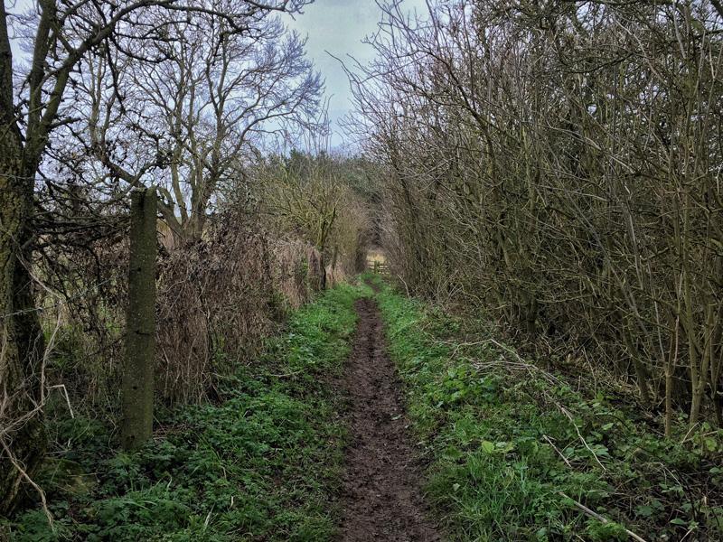 Walking in Lincoln - Viking Way, Splodz Blogz