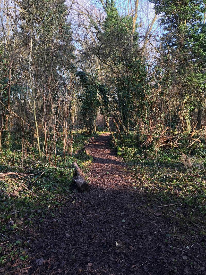 Peter Rabbit Woodland Trail, Langdon Nature Reserve | Splodz Blogz