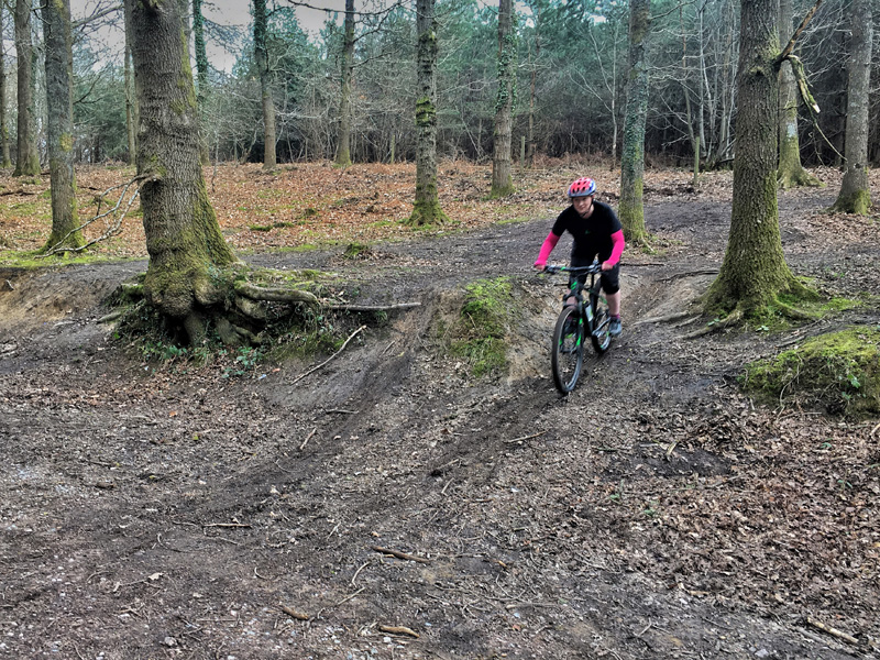 MOUNTAIN BIKING IN THE FOREST OF DEAN