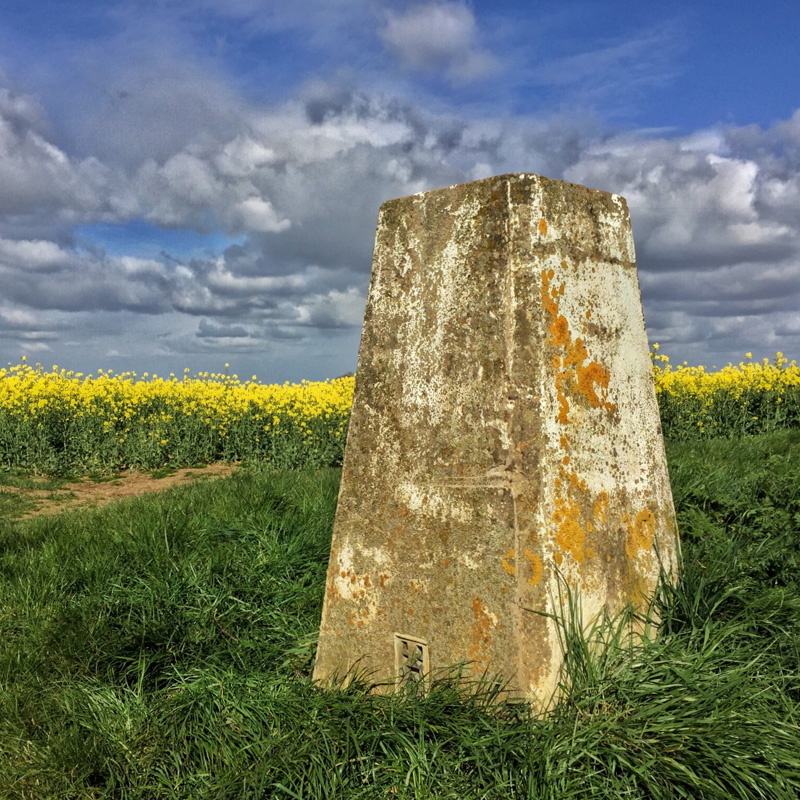 Splodz Blogz | My Nature, Trig Pillar