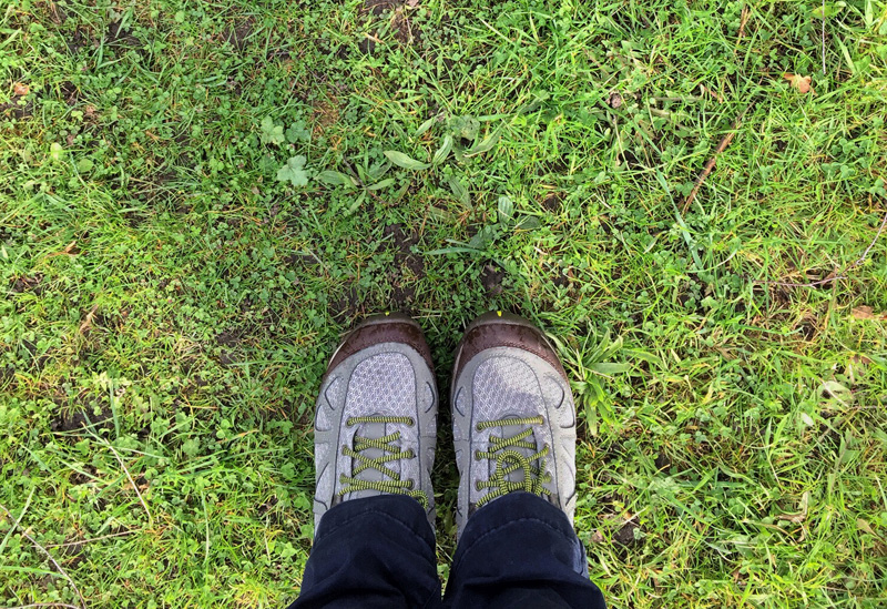 Splodz Blogz | Merrell Siren Sport Q2 Walking Shoes