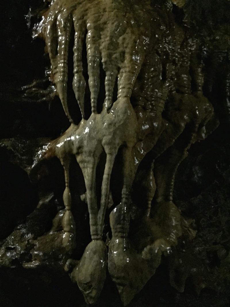 Splodz Blogz   White Scar Cave Witches Fingers