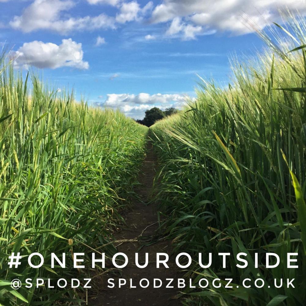 Splodz Blogz   One Hour Outside