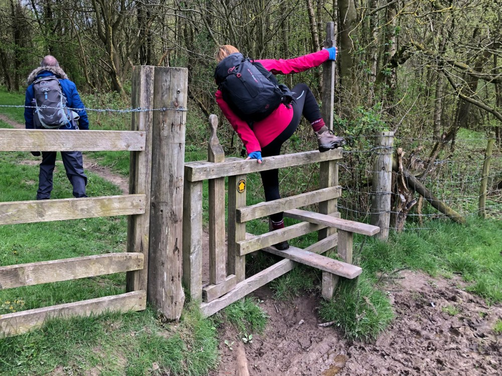 Splodz Blogz | Outdoor Bloggers Weekend in Dalby Forest