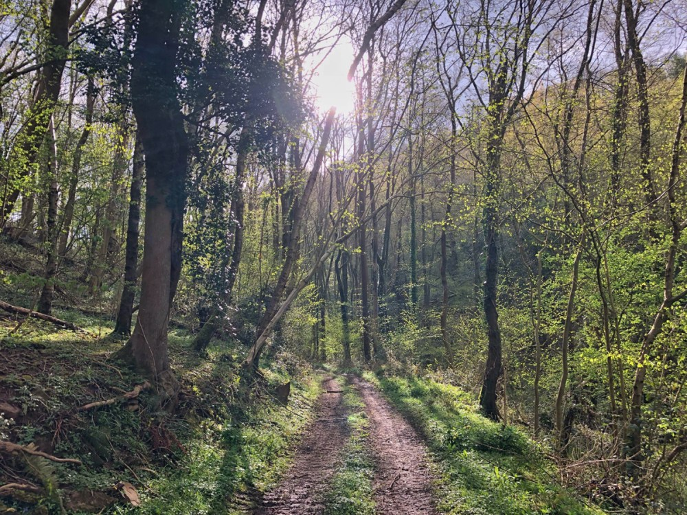 Splodz Blogz | Glamping at Hidden Valley Yurts, Wye Valley, South Wales