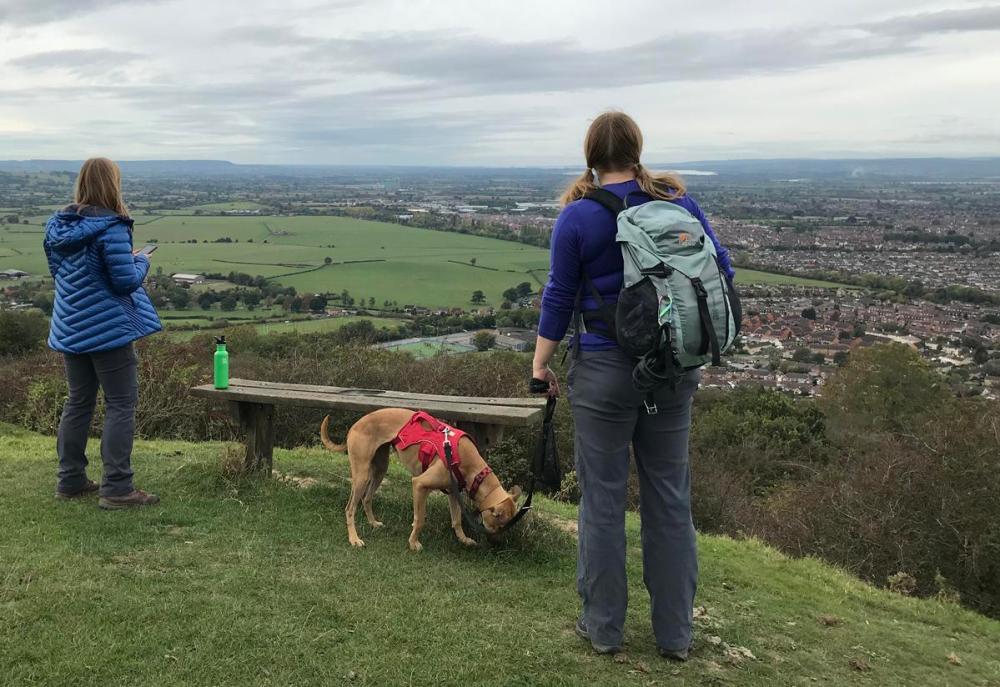 Splodz Blogz   GetOutside Activity Challenge - Walk the Dog at Robinswood