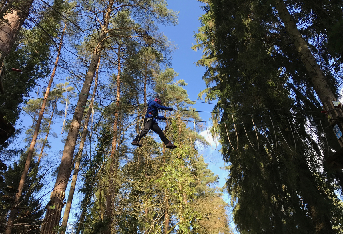 Splodz Blogz   Go Ape Mallards Pike, Forest of Dean