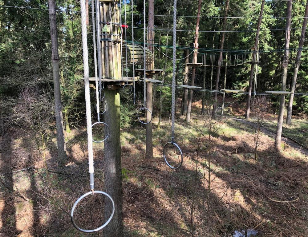 Splodz Blogz | Go Ape Mallards Pike, Forest of Dean