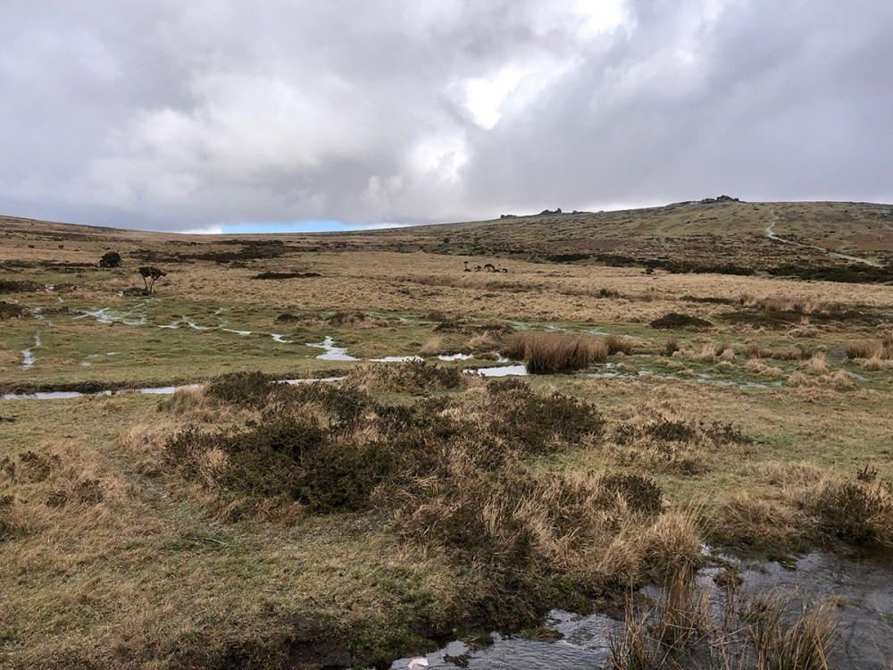 Splodz Blogz | Dartmoor National Park