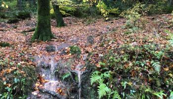Splodz Blogz   Hiking in the Quantock Hills AONB