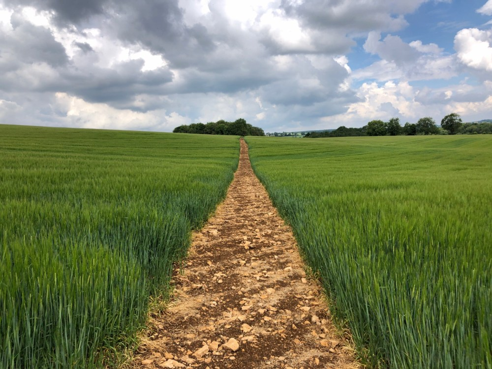 Splodz Blogz | Short Walks in the Cotswolds - Guiting Power and Naunton