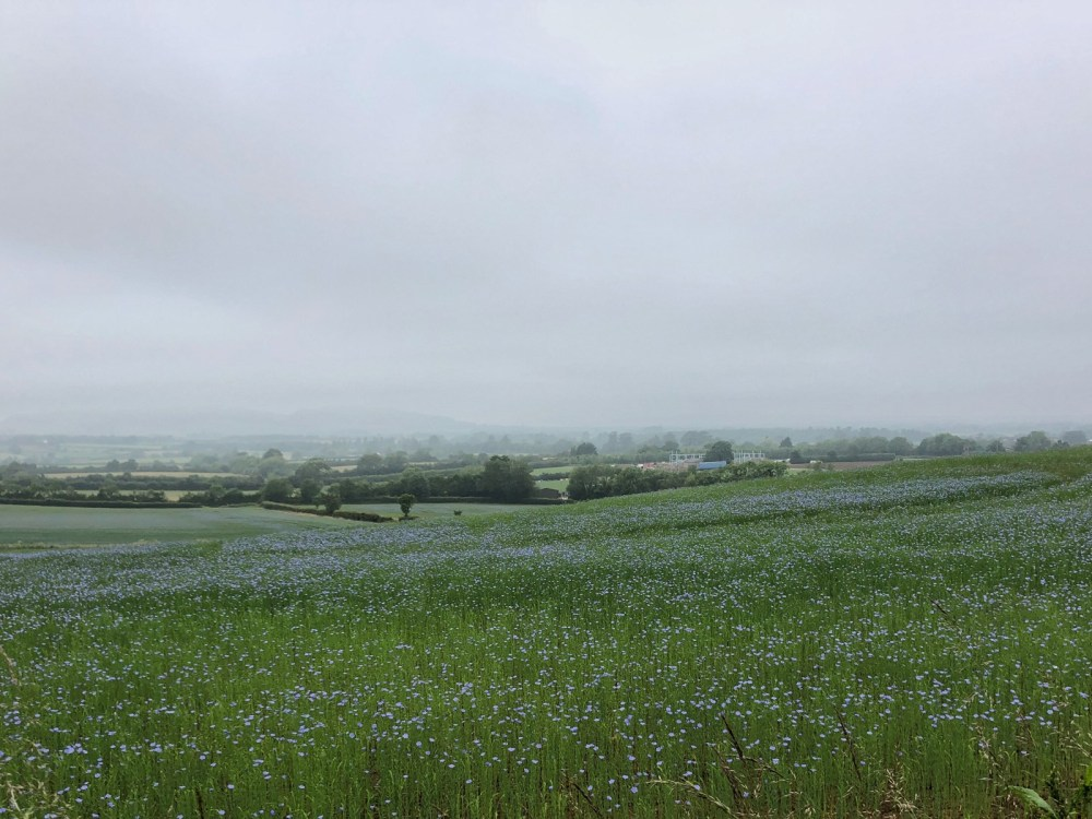 Splodz Blogz | Short Walks in the Cotswolds - Stanway and Stanton