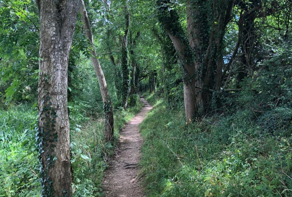 Splodz Blogz | Short Walks in the Cotswolds - South Cerney