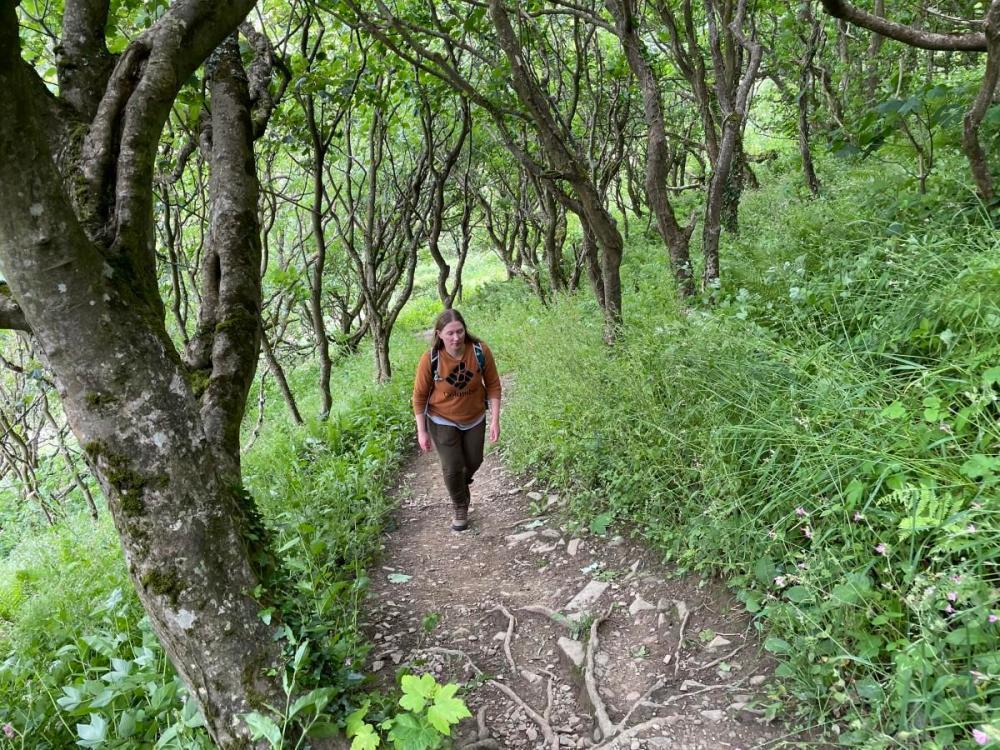 Splodz Blogz | Hiking on the South West Coast Path