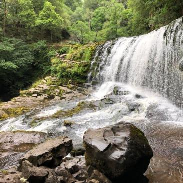 WEEKLY BLOG EPISODE 80 | WATERFALLS AND REDWOODS