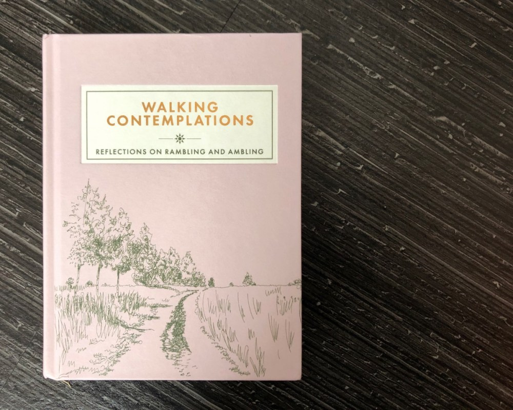 Splodz Blogz   Walking Contemplations