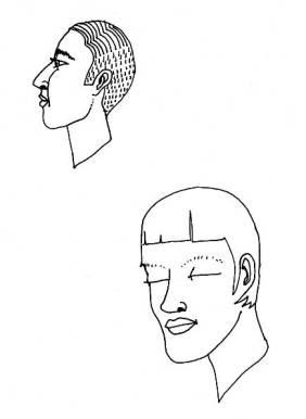 two.pristine.heads