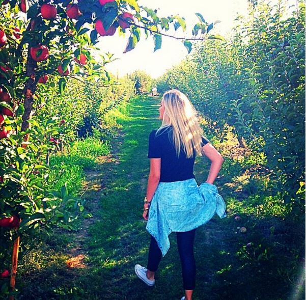 greenbluff apple picking