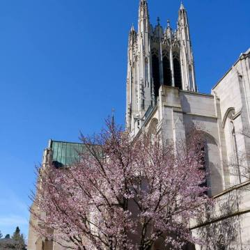 A Compelling Creative Witness: Evangelism Training for Episcopalians @ Cathedral of St. John the Evangelist |  |  |