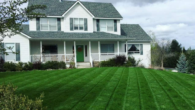 Beautifully maintained lawn