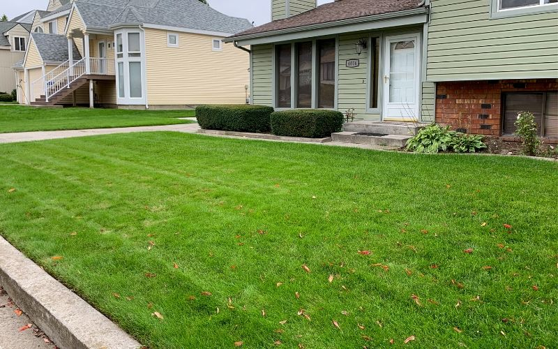 A home with a healthy, green, and weed free front yard.