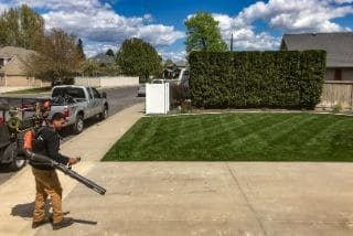 Lawn Cleanup Service