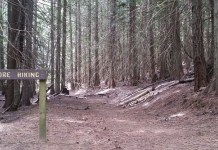 Spokane Hikes