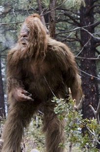 Sasquatch and Wolverine costumes are giving the typical witch, devil and ghost costumes a run for their money as popular Halloween costumes this year.